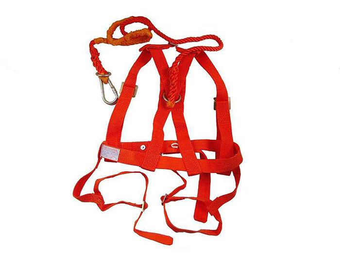 双背带式安全带
